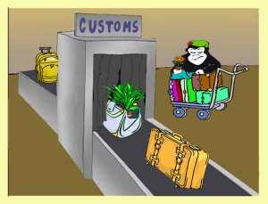 Guerilla Gardener going through Customs