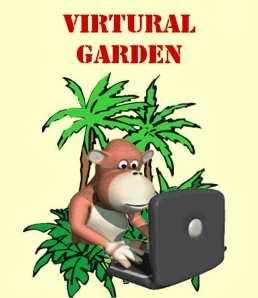 Guerilla Virtural Garden Adventures