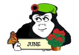 June Guerilla Gardener