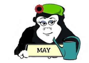 May Guerilla Gardener