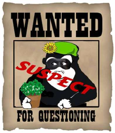 Guerilla Gardener wanted for suspected involvement and organization of the famous Tomato Caper of 2015!