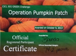 2nd Place Pumpkin_2013