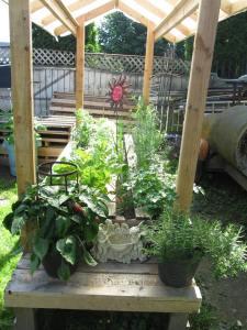 Pallet Garden DYI Complete