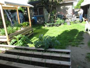 Multiple Pallet Gardens