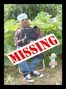 Ray Missing Poster
