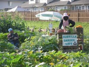 Guerilla Garden Cafe 2013