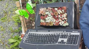 Computer Planter