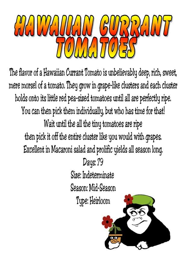 Currant_Tomato_Sign