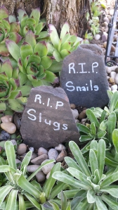 RIP Slugs and Snails