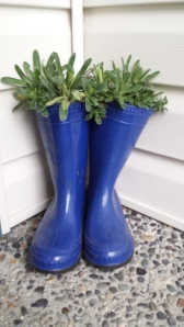 Blue Rain Boot Planter