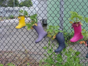 Colored Rainboot Planter Collection